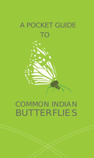 Common Indian Butterflies