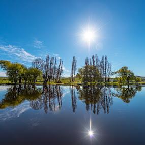 Meadowbank River by Matt Green - Landscapes Waterscapes ( reflections, landscape, , color, colors, portrait, object, filter forge )