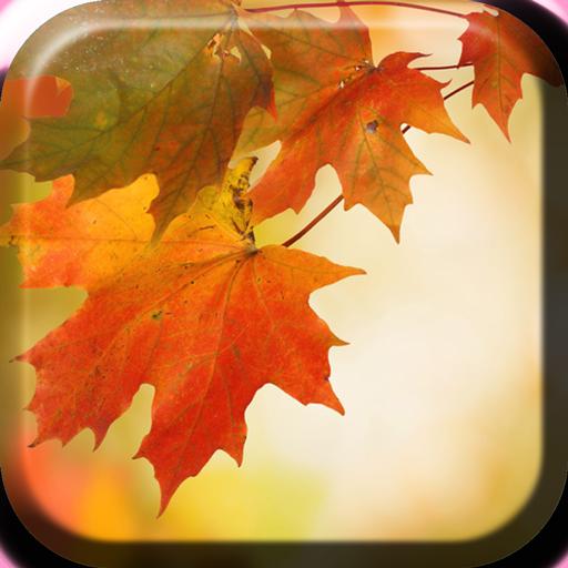 秋季動態壁紙 LOGO-APP點子