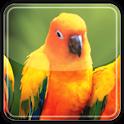 Flappy Bird - Puzzle icon