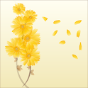 Gentle Daisies Live Wallpaper icon