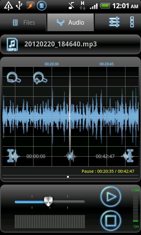 RecForge Pro - Audio Recorder - screenshot