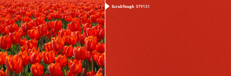 image of Scrub Tough - ST9131