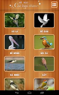 Bé học Các loài chim