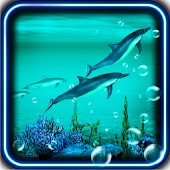 Dolphins Sound live wallpaper