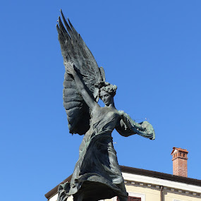 Angel in central square - Sarzana SP (IT) by Francesco Altamura - Buildings & Architecture Statues & Monuments ( angel, marble, statue, blue sky, art, historic district, monument,  )