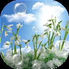 Snowdrops Live Wallpaper HD icon