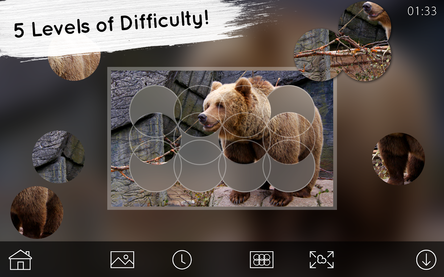 Venn Bears: Circle Jigsaw- screenshot