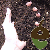 Citizen Scientist Soil