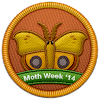 Moth Week 2014