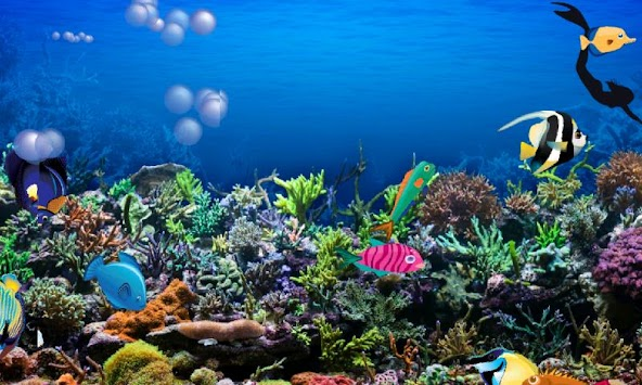 Awesome Aquarium for Kids apk screenshot