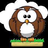 Owl Pounce
