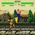 KongFu Fighter Hero icon