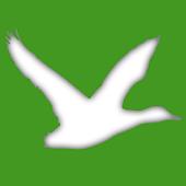 NZ Duck Calls