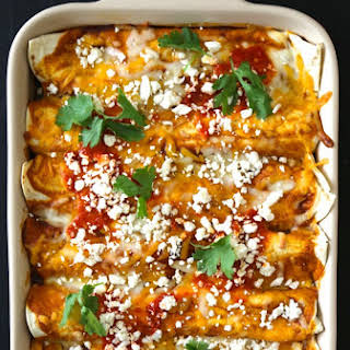 Moroccan Spiced Chicken Enchiladas with Harissa Red Sauce.