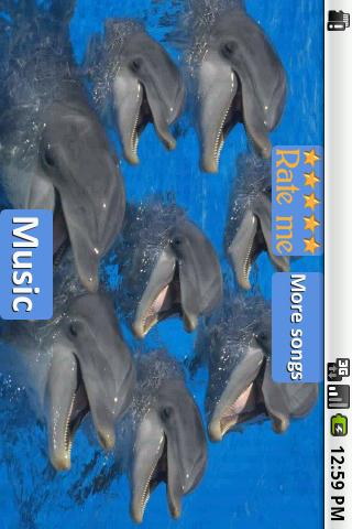 Dolphins - Sound to relax - screenshot