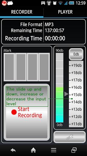 VoiceMarker Mark Seek Recorder