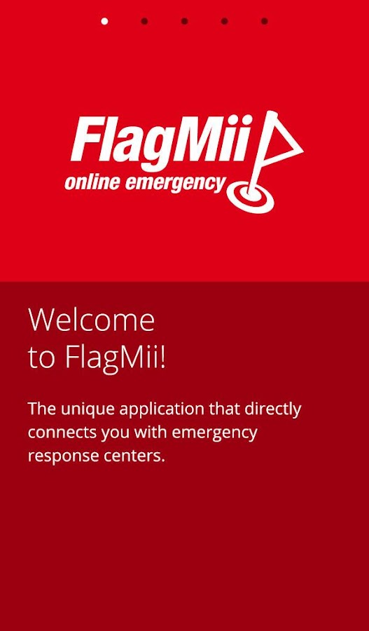 FlagMii- screenshot