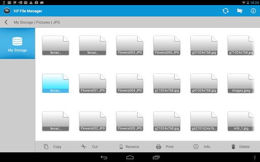 HP File Manager