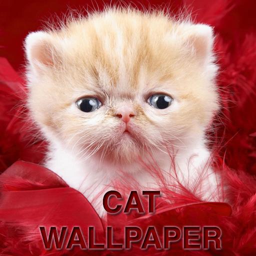 Cat Wallpapers 媒體與影片 App LOGO-APP試玩