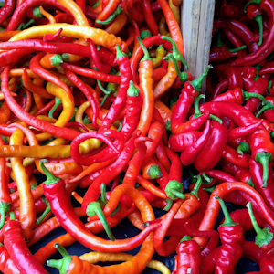 Hot Peppers - Food Contest 2015.jpg