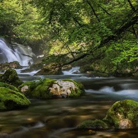 by Jani Matko - Nature Up Close Natural Waterdrops