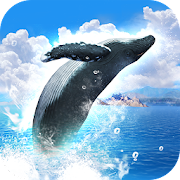 REAL WHALES Find the cetacean.