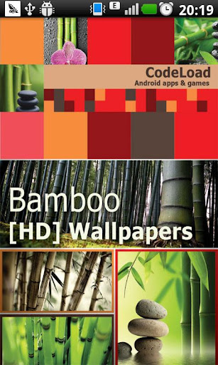 Bamboo [HD] Wallpapers