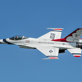 The Thunderbird by Ivan Anchev - Transportation Airplanes ( jet fighter; f-16;thunderbirds; air show; pilot )