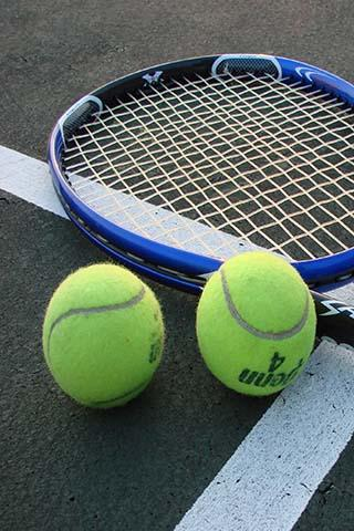 Stickman Pro Tennis - screenshot