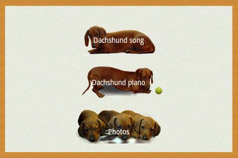 Dachshund sad song DONATE- screenshot