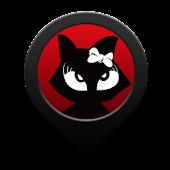 Cat Theme