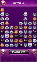 Screenshot of Cat Faces