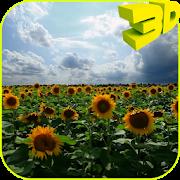 Sunflowers 3D Live Wallpaper