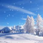 Photo Snow Live Wallpaper icon