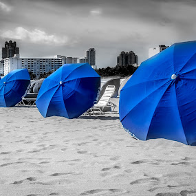 The Shades of Blue by Jan Murphy - Artistic Objects Other Objects ( sand, sun shades, umbrellas, blue, black and white, sunny, florida, miami, hot, beach,  )