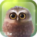 Little Owl Lite icon