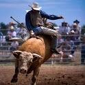 Bull Riders puzzles icon