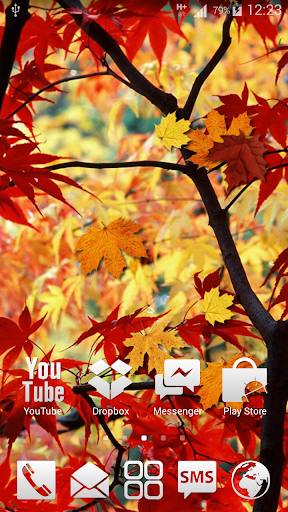 Autumn Leaves HD LWP