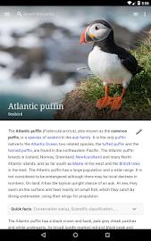 Wikipedia Screenshot 7