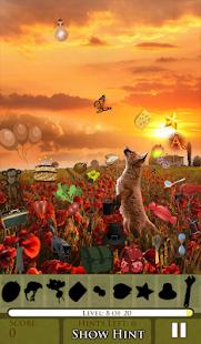 Hidden Object - The Fox Says