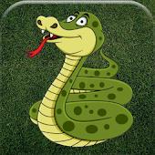 Snake Terrain