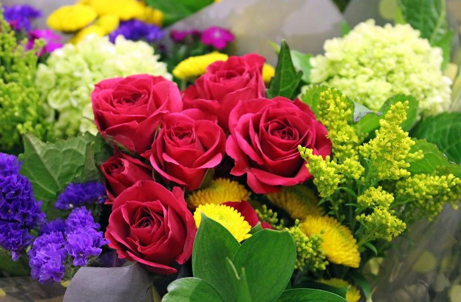 winter roses by JERry RYan - Flowers Flower Arangements