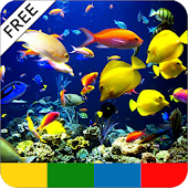 Tropical Fish Guide - FREE