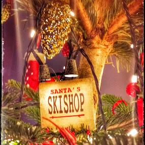 Ski Shop Decoration by Joe Harris - Public Holidays Christmas ( lights, ski, shop, tree, decoration, christmas, trees )