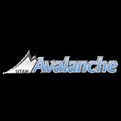 Utah Avalanche Soccer Club