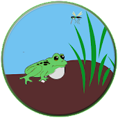 Active Frog