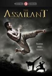 The Assailant