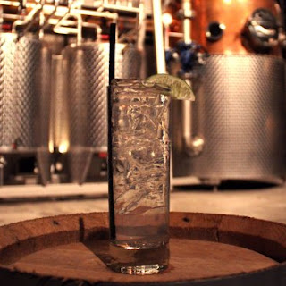 How To Mix The Perfect Gin And Tonic