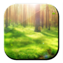 Forest Midday 3D LWP logo